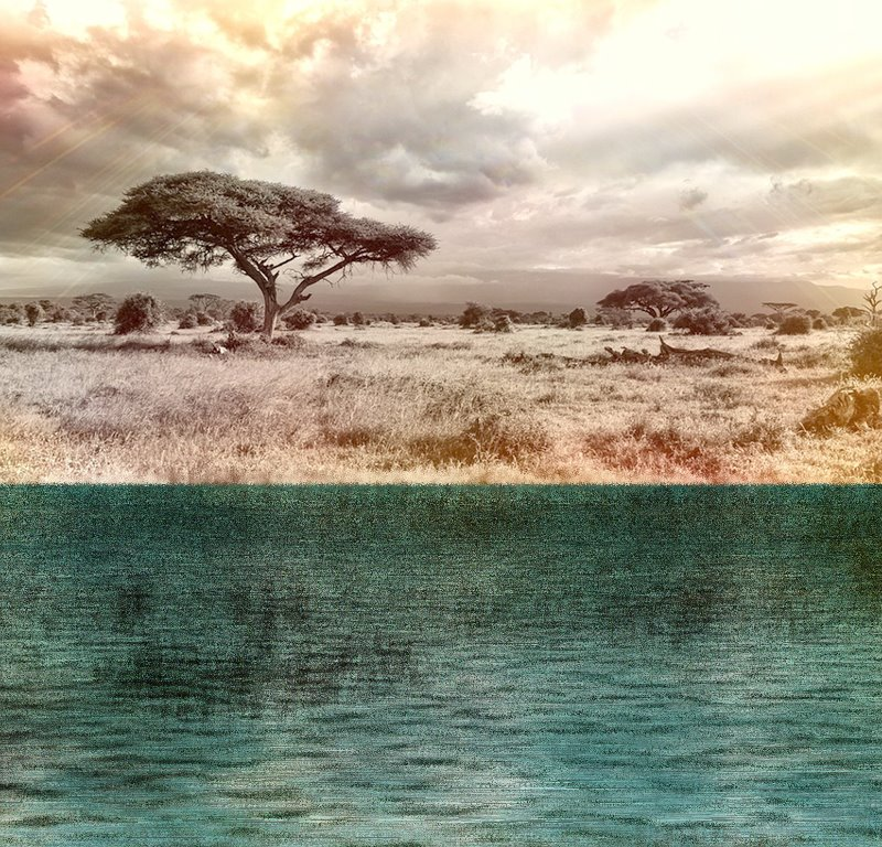 2017-06-03 16-36-37 africa-944465_960_720, with Reflections on Water!.jpg