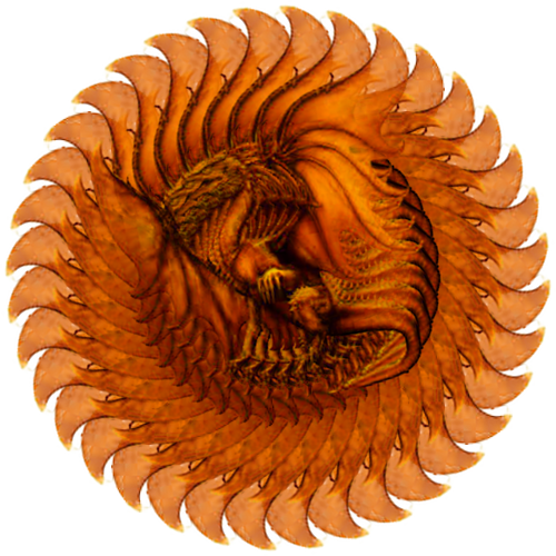 BA.Fan illusion.Dragon.36 slices. xy at center of image.png