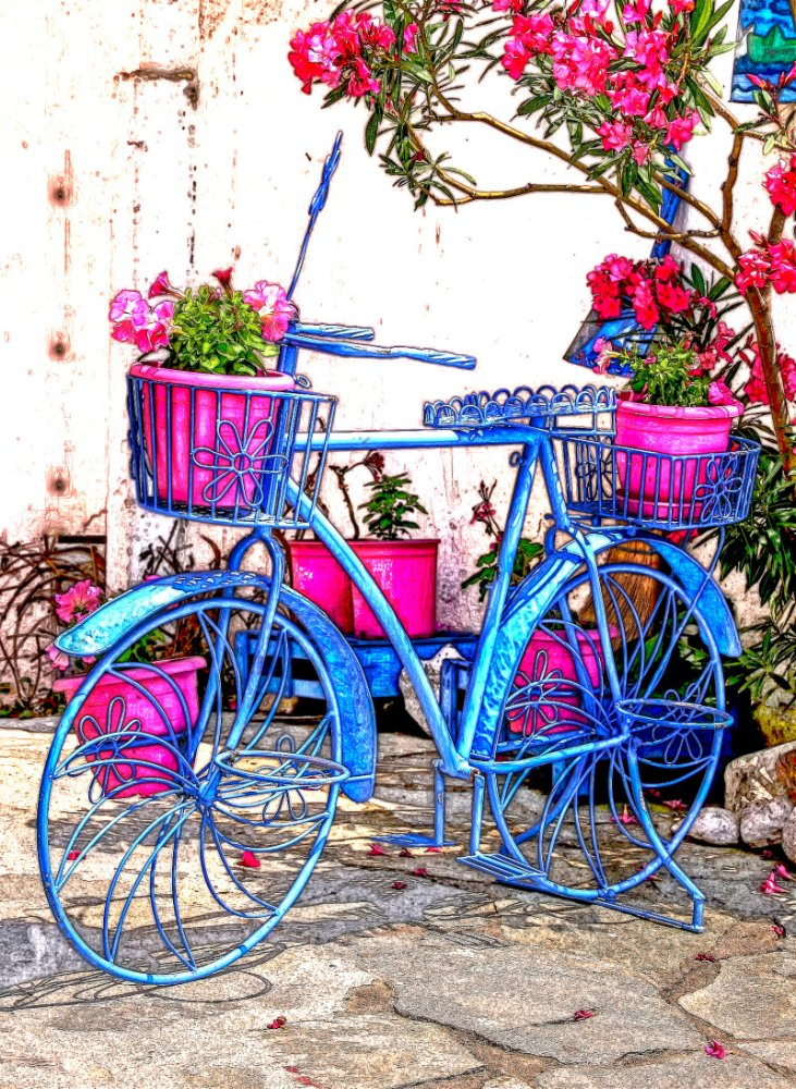 Bicycle_flowers.JPG