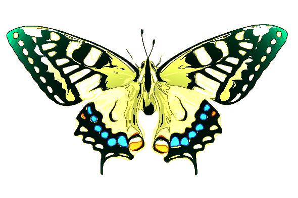 Butterfly2-ColorManipulations.png