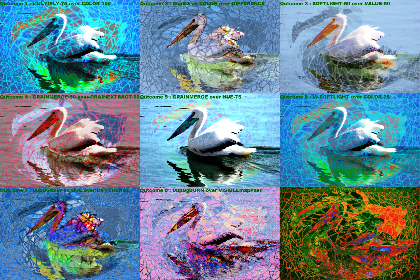 Pelican_DN_Abstract_Light_Montage.jpg