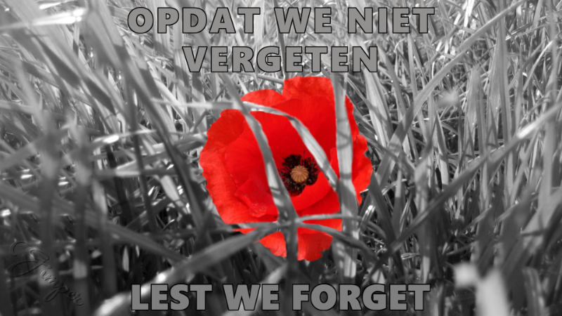 lest we forget.png