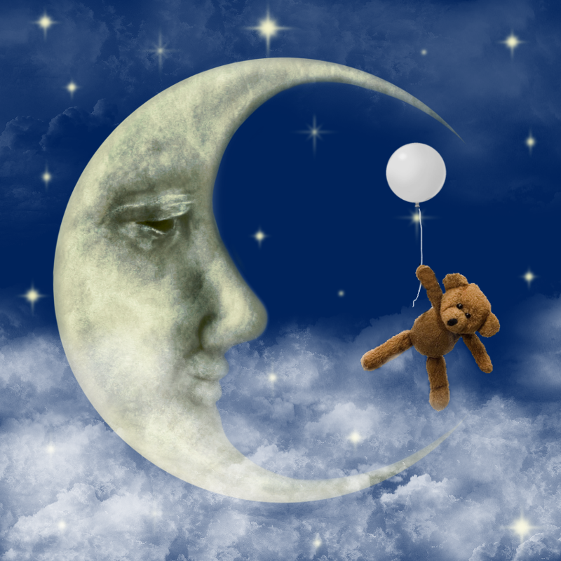 moon and bear.png